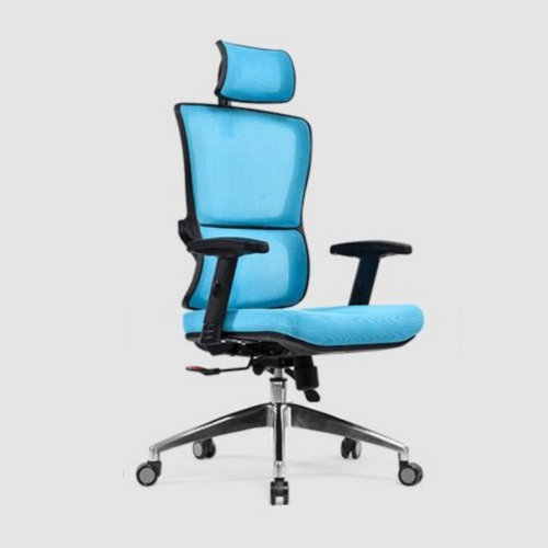 High Quality plastic ergonomic adjustable mesh back lumbar support manager executive boss office chair -1